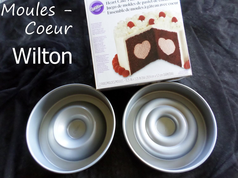 Moule Pour Rainbow Cake Zodio