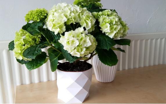 Mon cache pot en origami