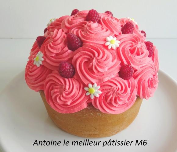Le Maxi cupcake Framboise-Vanille
