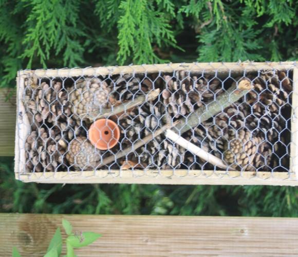 hotels à insectes (biodiversité)