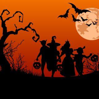 Venez fêter Halloween dans votre magasin Zodio Thillois !