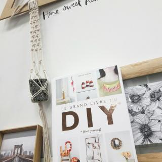 J'ai choisi le Grand Livre du DIY... pour toutes les filles de ma famille!