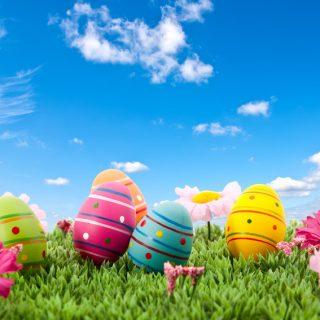 Nouveau Pôle démo spécial Pâques !