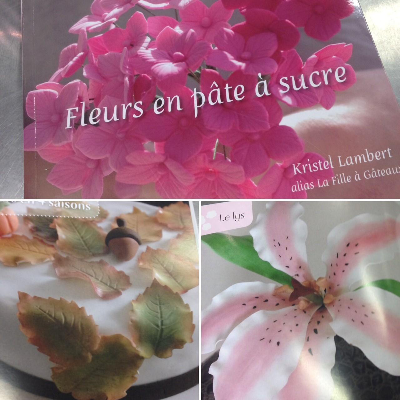 J'ai testé pour vous le livre Fleurs en pâte à sucre