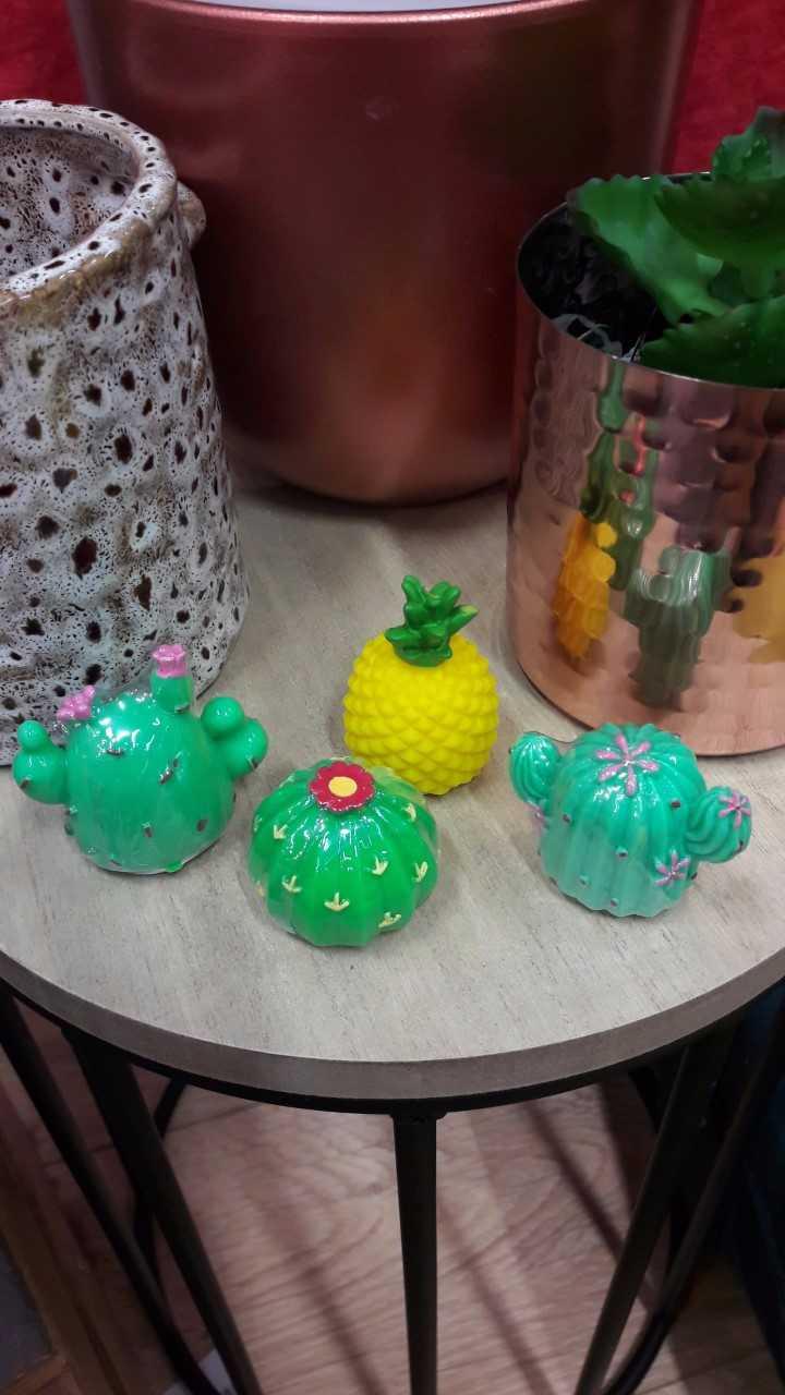 Baumes à lèvres cactus !!!