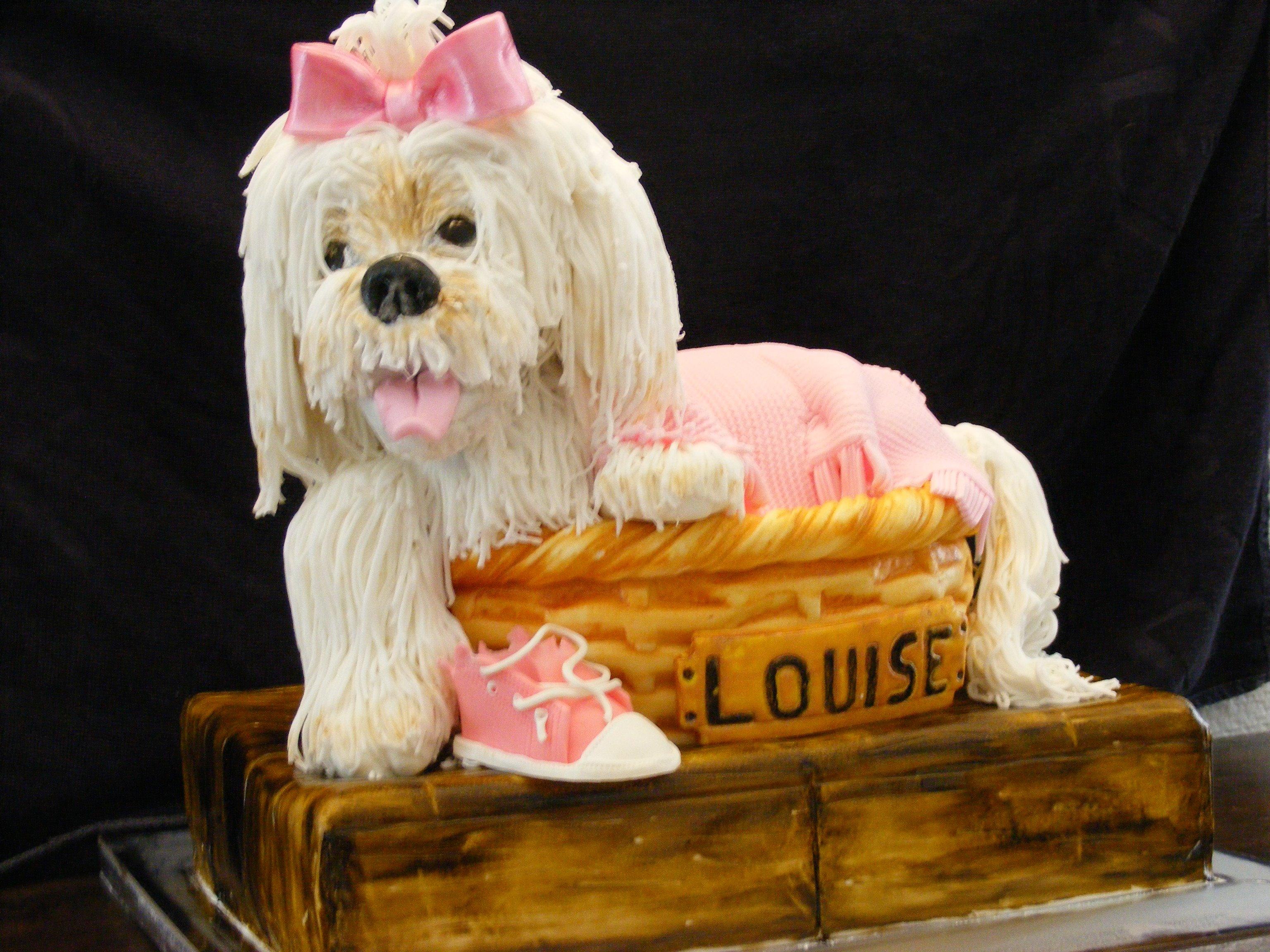Ne m'abandonnez pas pendant les vacances!!!!  un chien pour les 4 ans de Louise