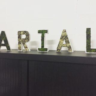 J'ai testé pour vous les lettres cartonnées blanches et la mousse végétale