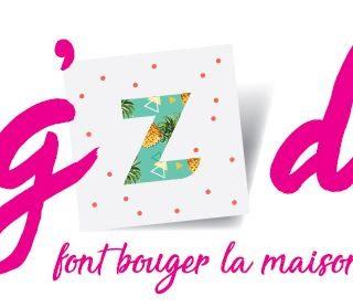 Blog'Z day 2017 c'est parti!
