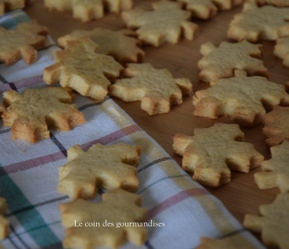 Des petites biscuits à l'érable pour voyager au Canada