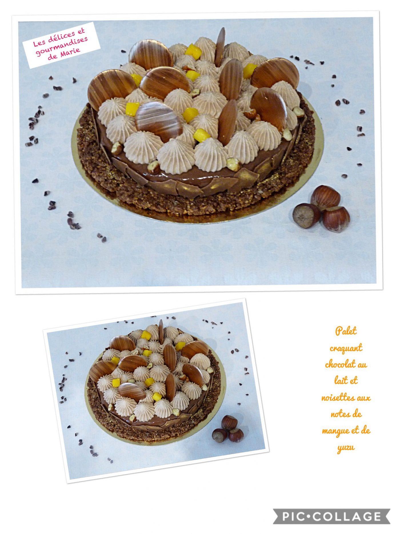 Palet craquant chocolat au lait et noisettes aux notes de mangue et de yuzu