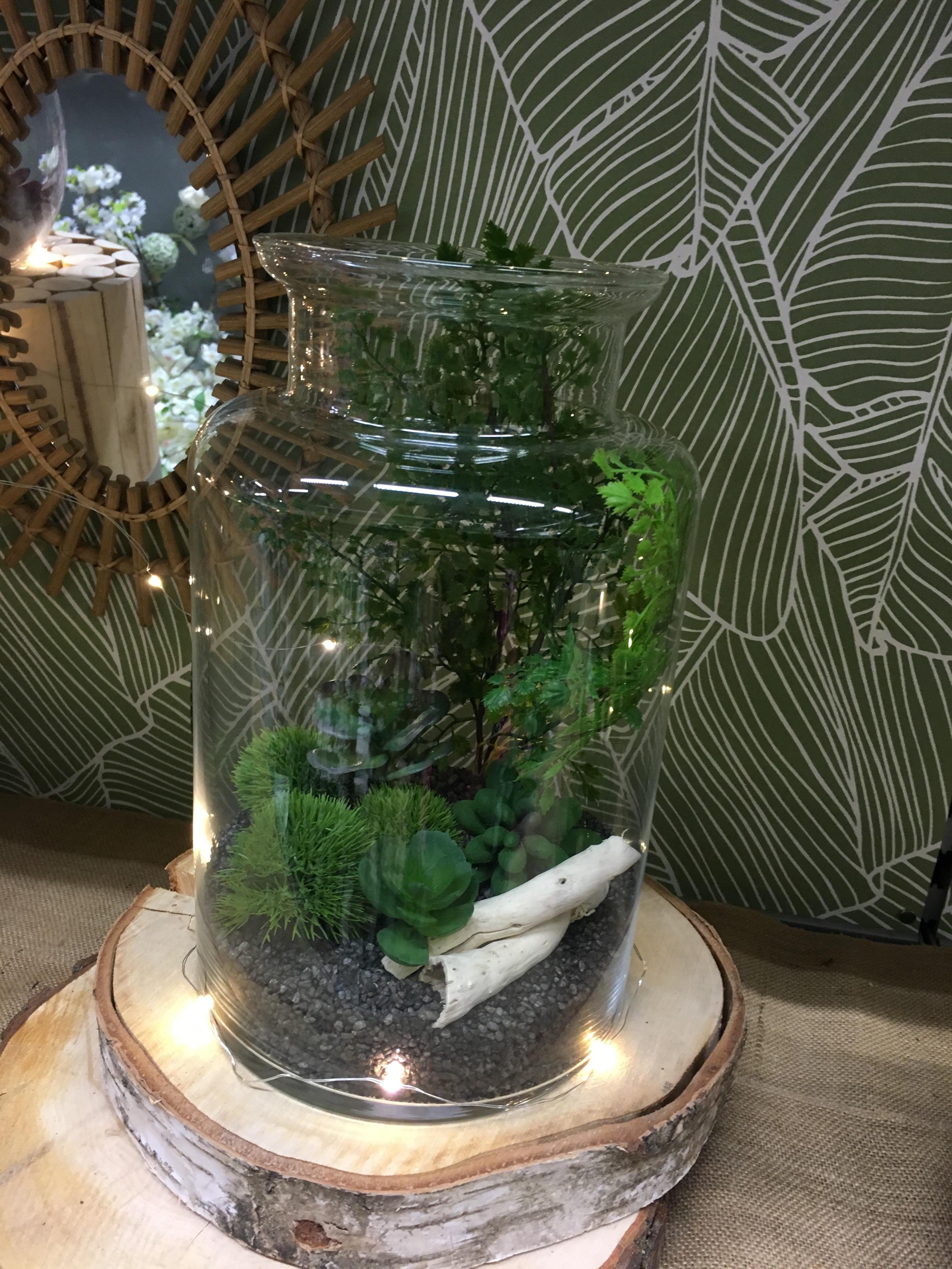 Réalisation d'un terrarium