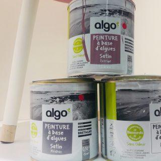 J'ai testé pour vous la peinture Algo