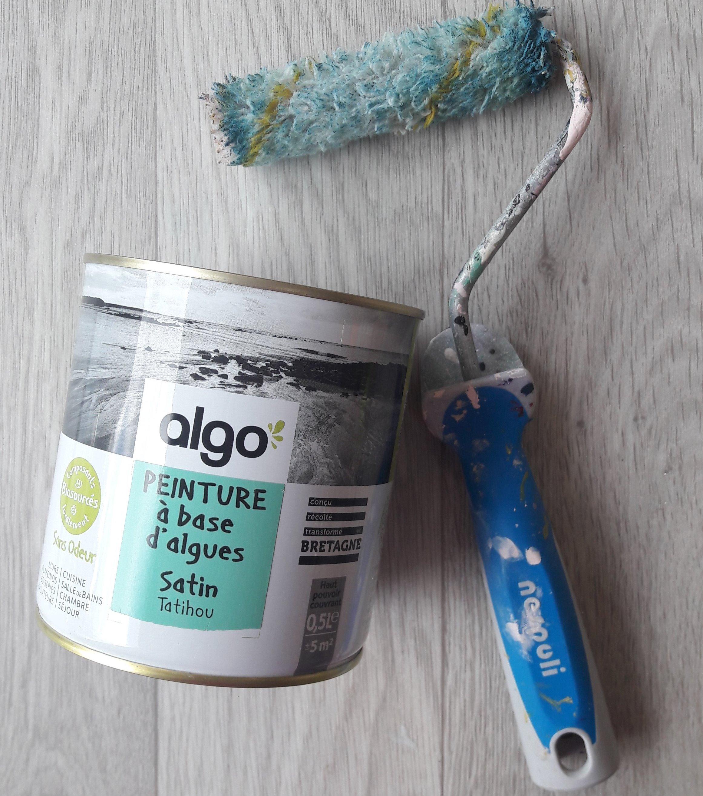 J'ai testé pour vous aLGO, peinture à base d'algues