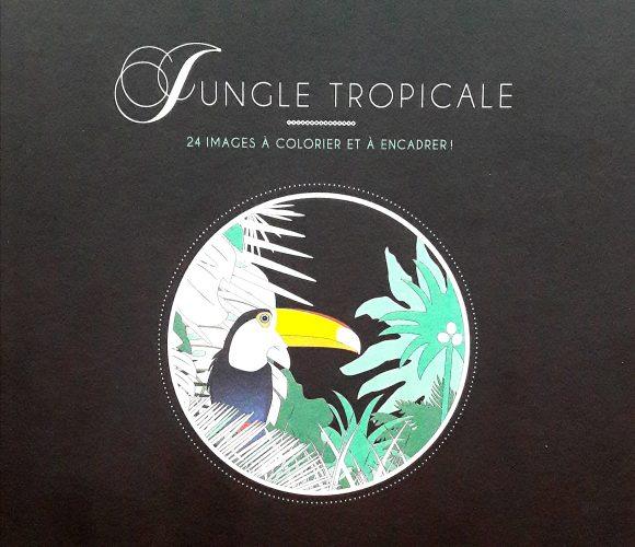 J'ai testé pour vous le livre de coloriages «jungle tropicale»