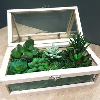 Je réalise mon terrarium