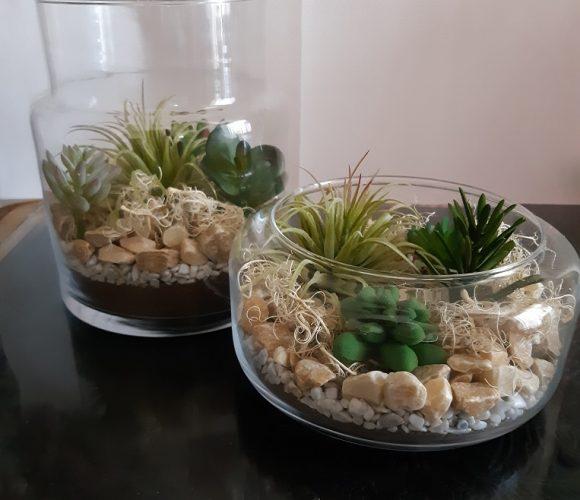 J'ai testé pour vous le terrarium jarre en verre