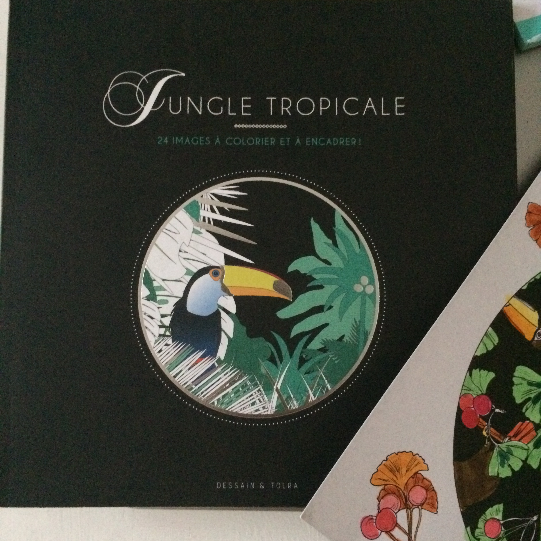 J'ai testé pour vous les coloriages jungle tropicale