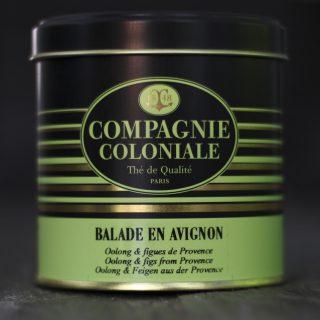 J'ai testé pour vous balade en Avignon de Compagnie Coloniale