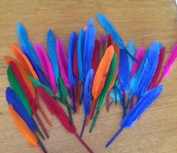 J'ai testé pour vous les plumes d'indien 15cm 10gr