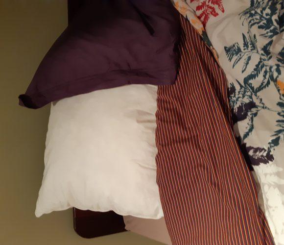 J'ai testé pour vous l'oreiller touche duvet