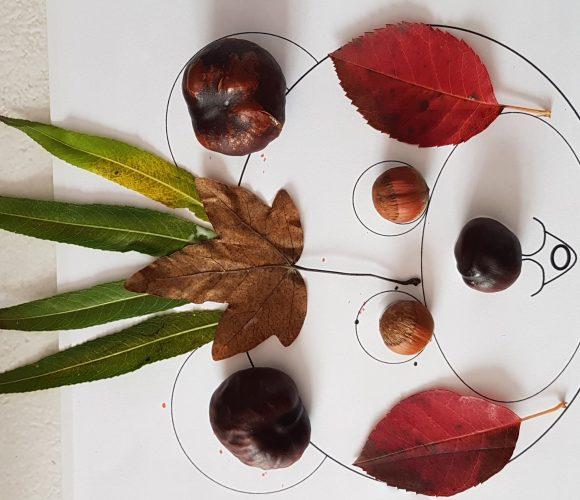 Activité collage d'automne