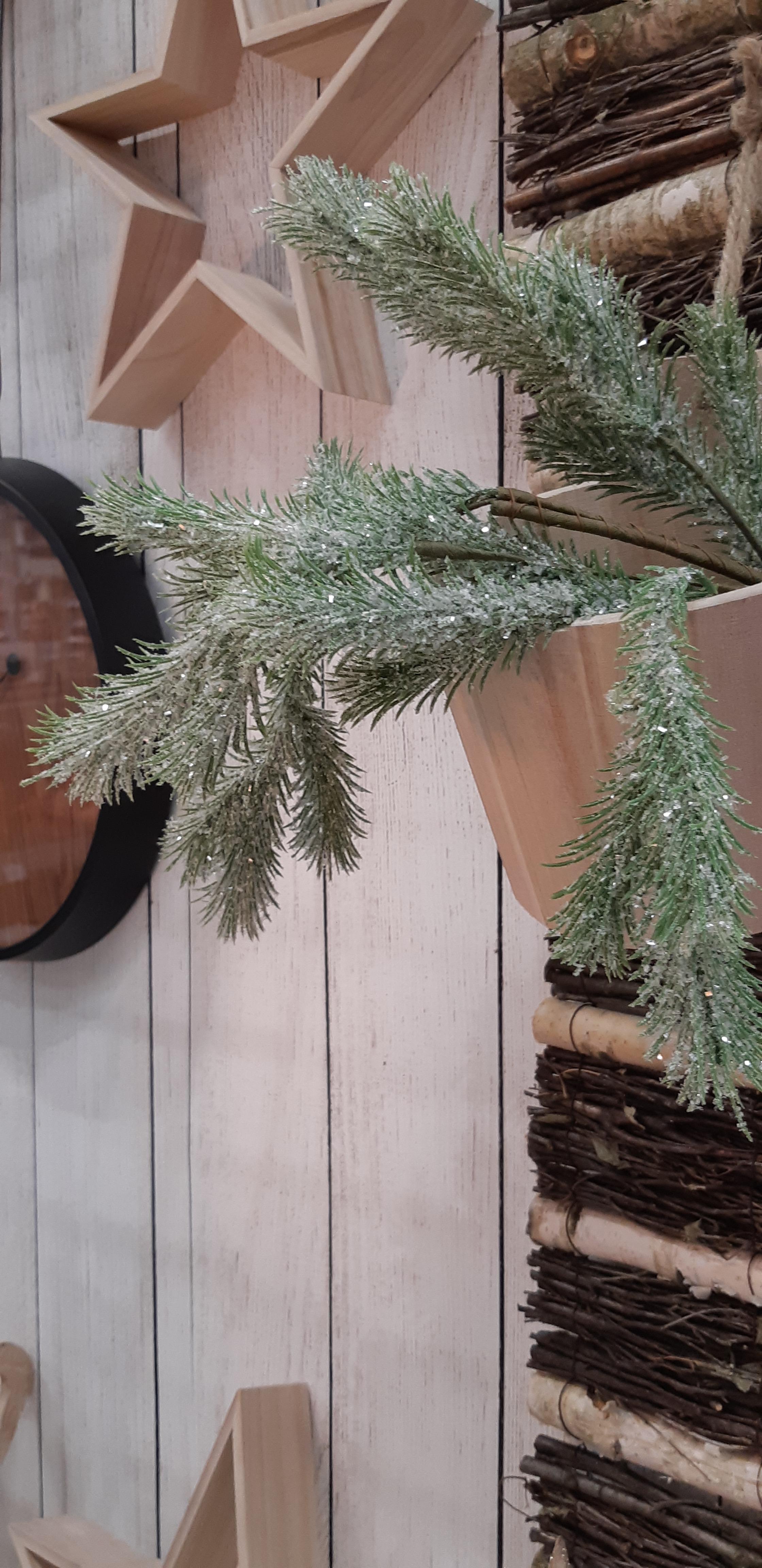 Une déco de Noël qui ne perd pas ses épines !