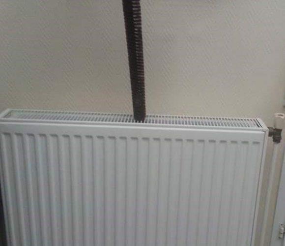 Pour des radiateurs, aux poils !