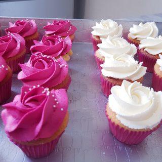 Mini caissettes a cupcakes fushia