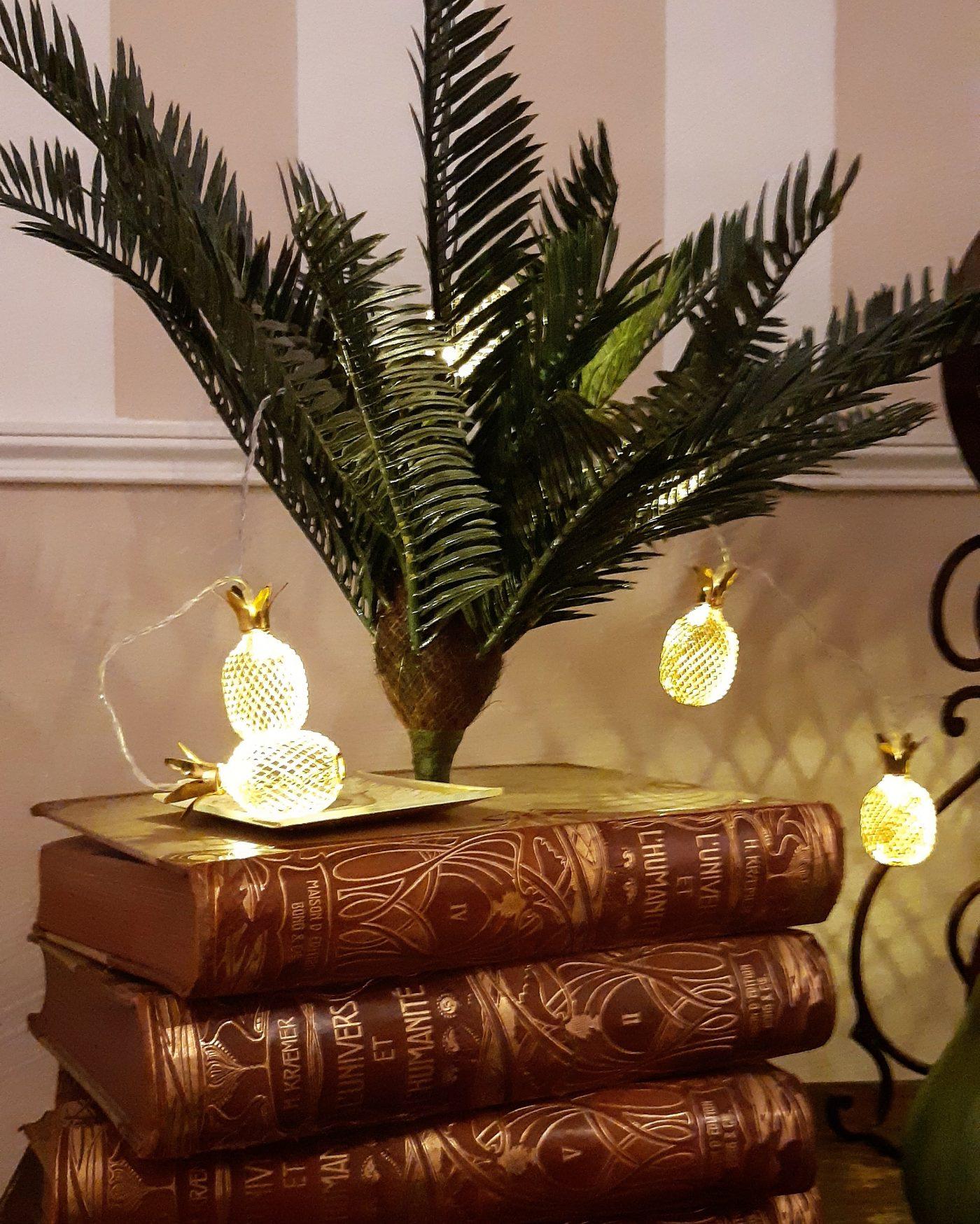 Des livres détournés en porte plante