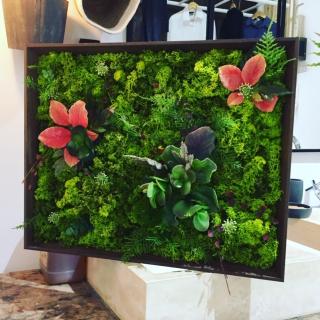 Mon tableau végétal DIY et sans entretien ;) !