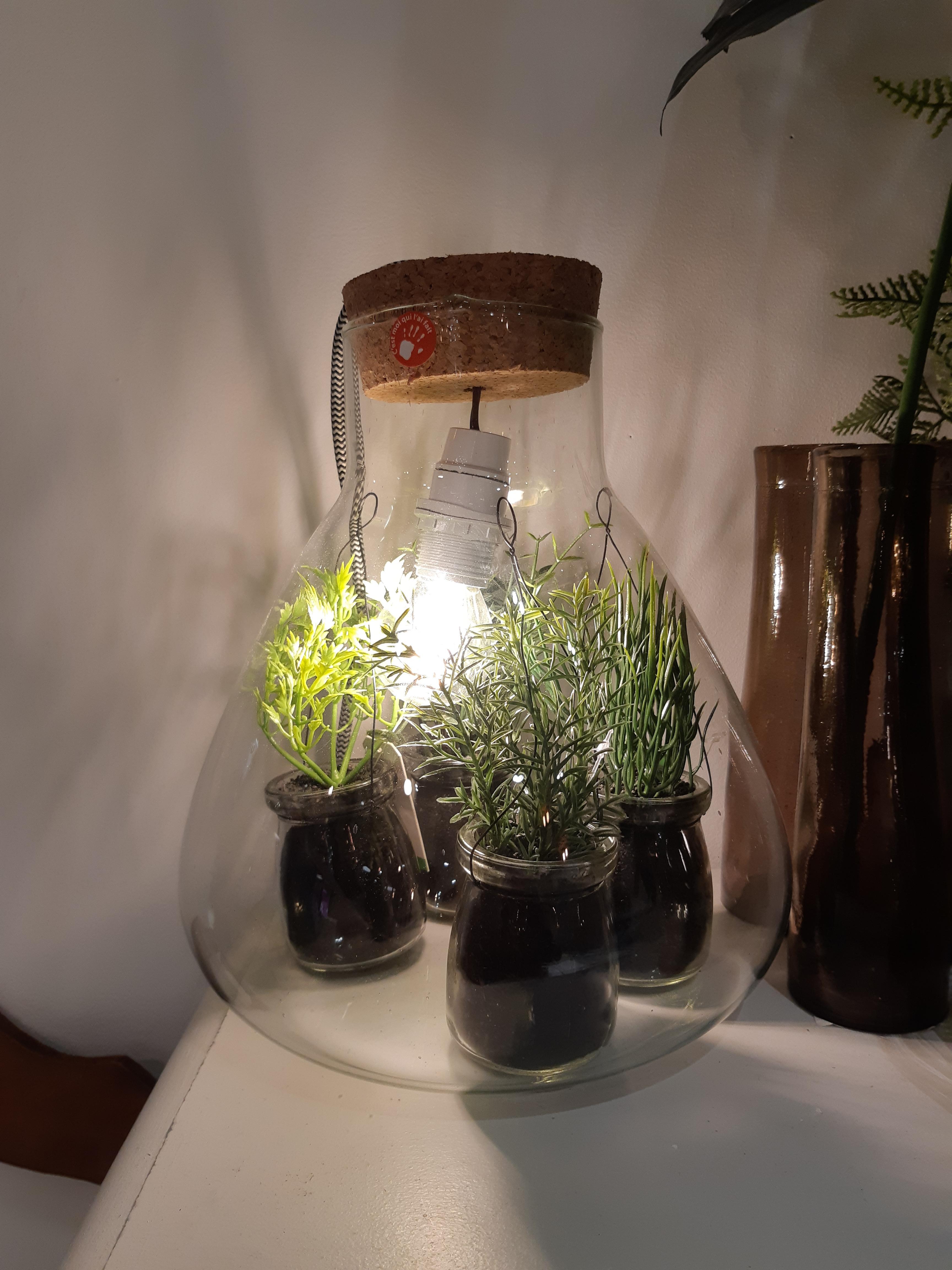 J'ai testé pour vous le terrarium bouchon en liège