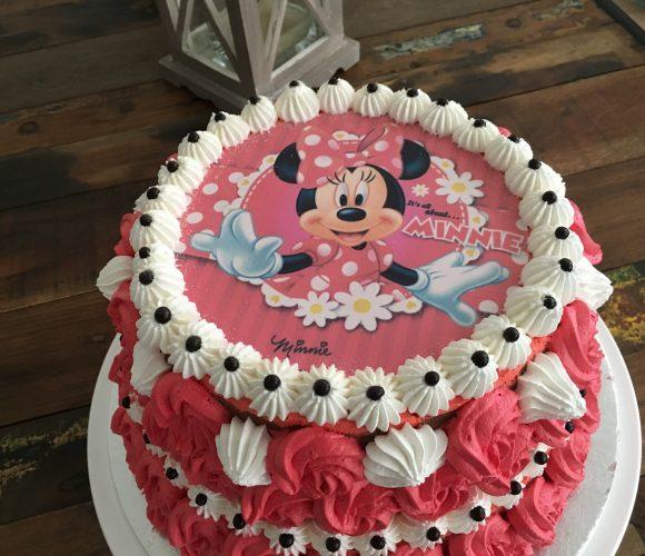 Layer Cake Minnie