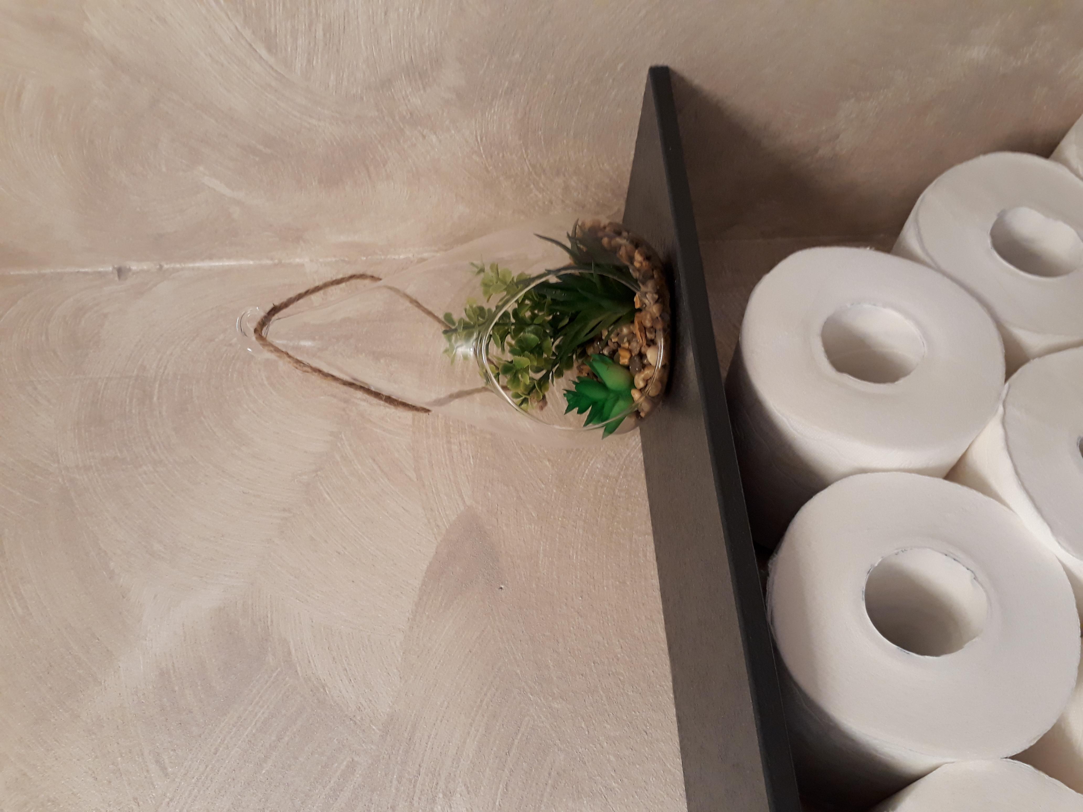 J'ai testé pour vous la Goutte verre plante grasse à suspendre