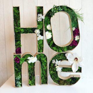 Mes lettres végétales !