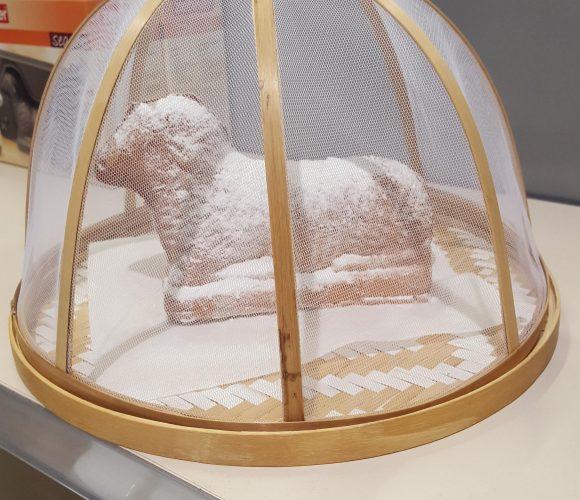 Mon petit agneau de Pâques