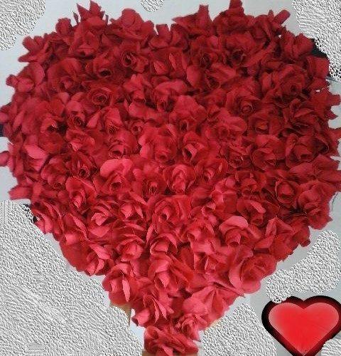 Pour les amoureux♥