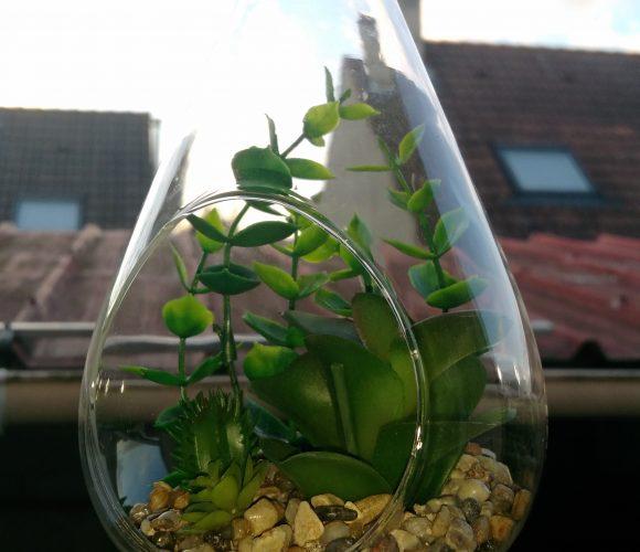 J'ai testé pour vous suspension plante artificielle