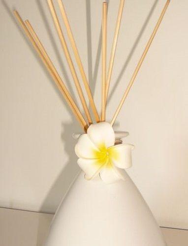 J'ai testé pour vous 20 tiges en rotin pour bouquet parfumé DURANCE