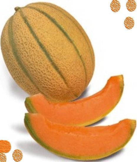 Confiture de melons