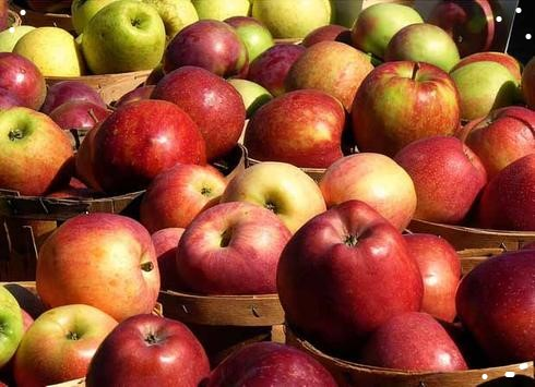 confiture de pommes pour l'hiver