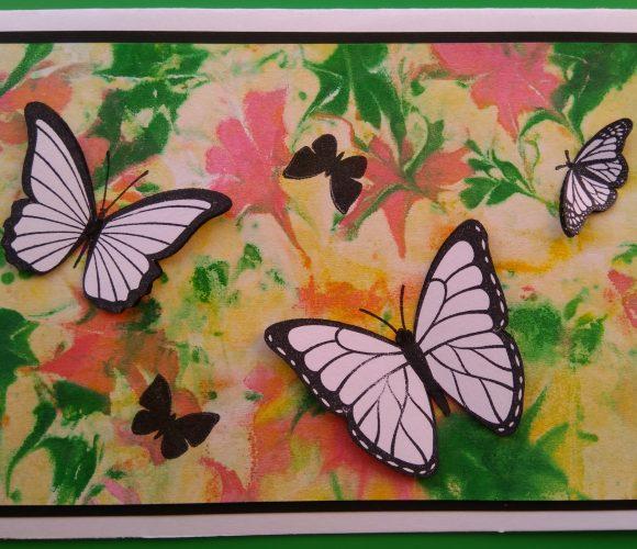 carte mousse à raser papillons