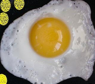 Qui se cache sous l'œuf ???  🥚🥚