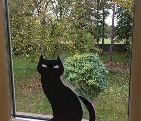 Une décoration d'enfer ! Halloween :  Mon Chat de Sorcière !