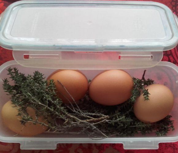 Astuce  :  Des œufs parfumés