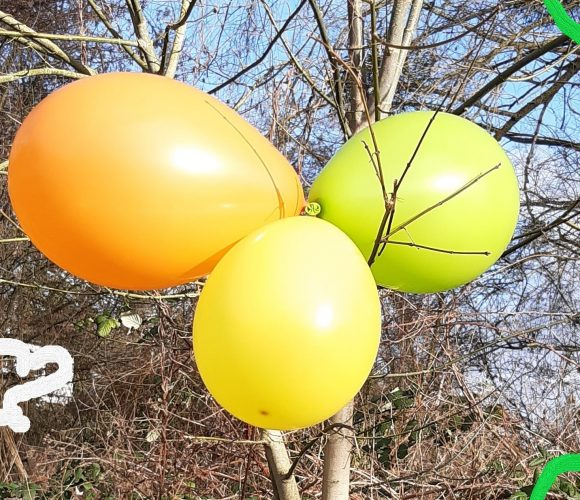 100 ballons multicolores de marque Française
