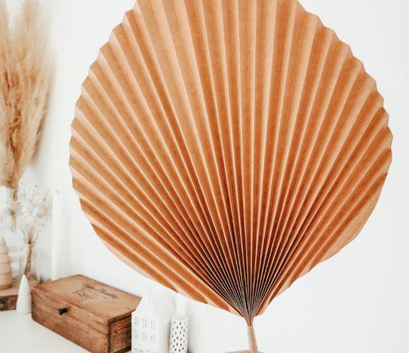 Feuilles de palme en papier kraft