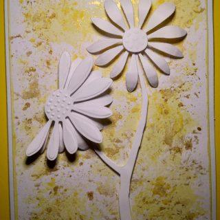 Carte anniversaire Marguerites