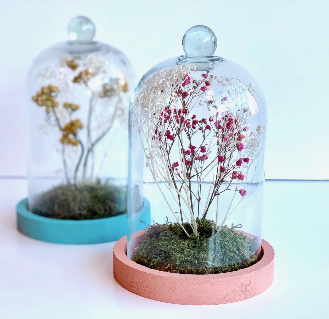 Idée cadeau DIY de fin d'année pour les maîtresses : une mini cloche végétale !