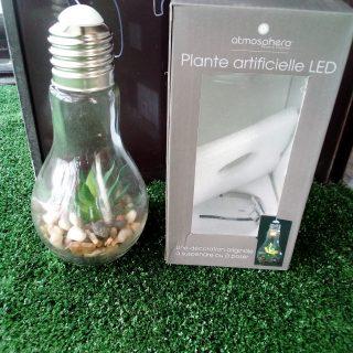 Ampoule verre plante artificielle à LED