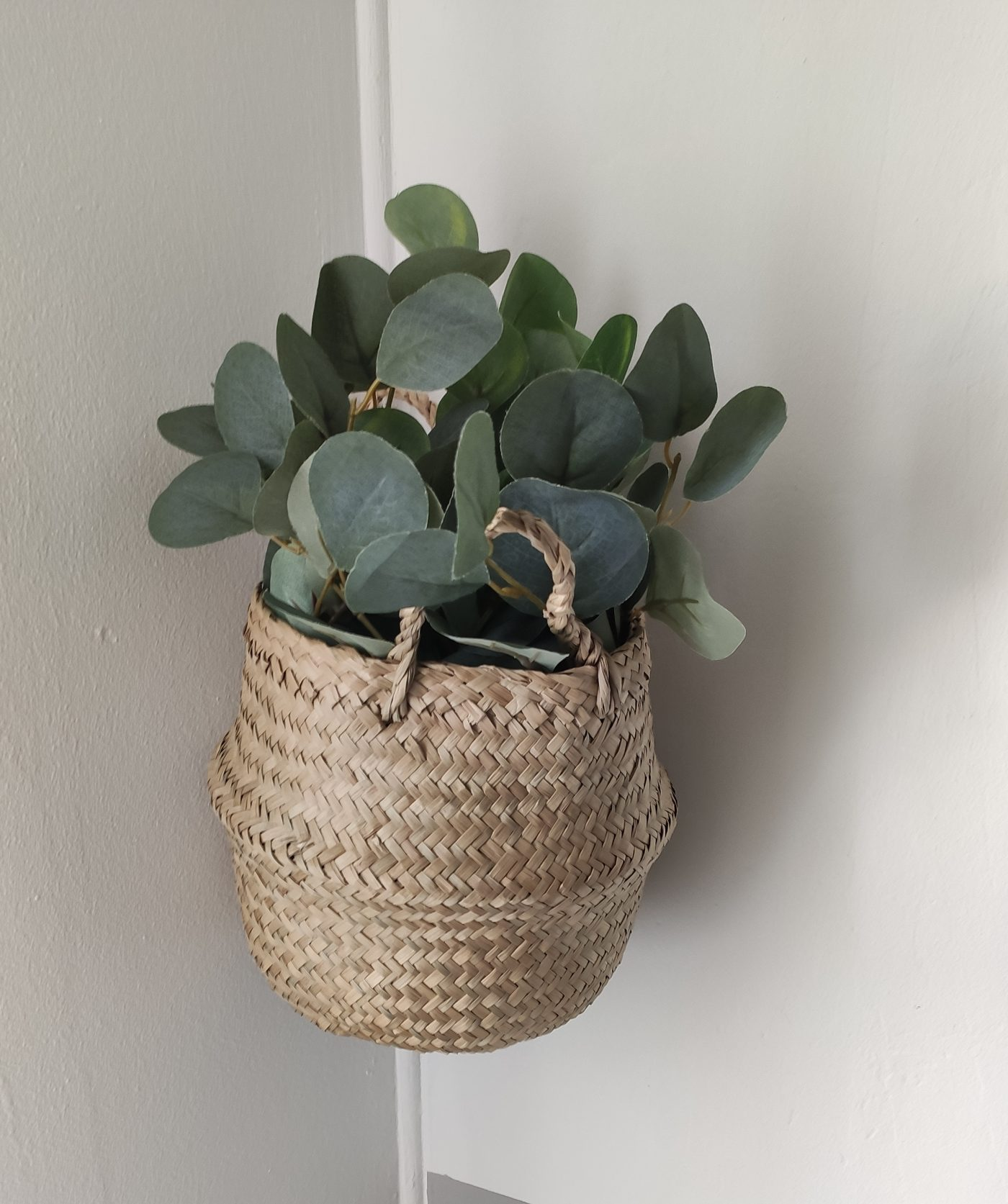 Eucaliptus... pour une ambiance nature et chaleureuse